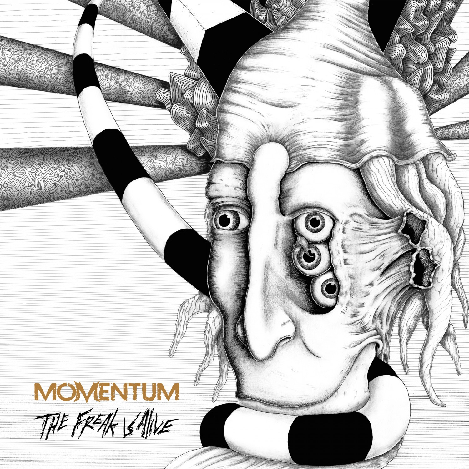 Momentum – The Freak Is Alive