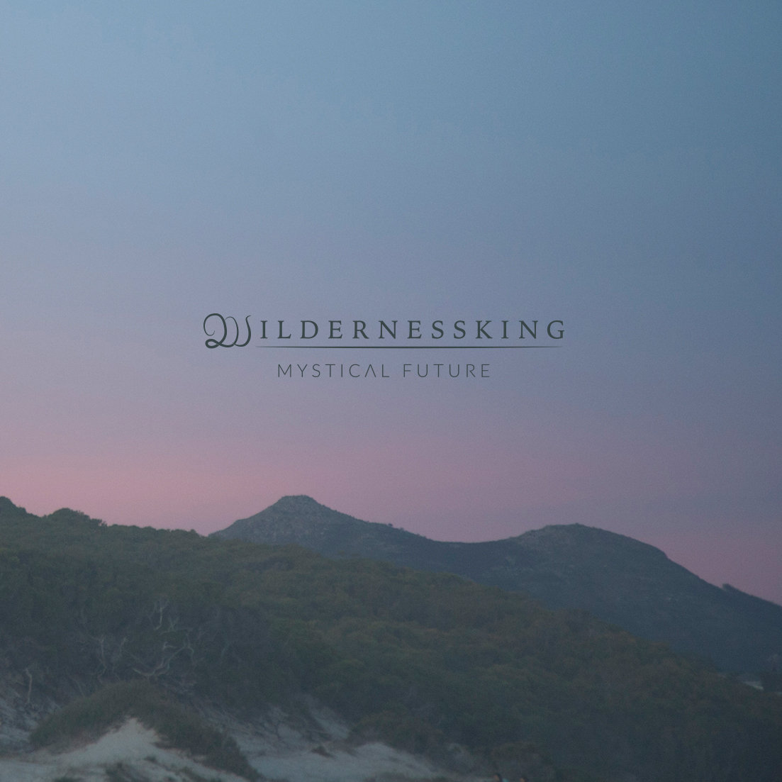 Wildernessking – Mystical Future